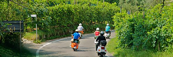 Rollerfahrer-im-Prosecco_590_196