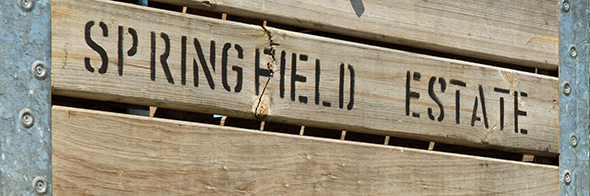 Springfield-Holzbox-590_1965a980ef7a42c9