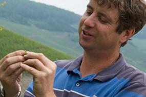 Wein des Monats Mai 2016: 2014er Weißburgunder von Gernot Hain mit 15% Rabatt