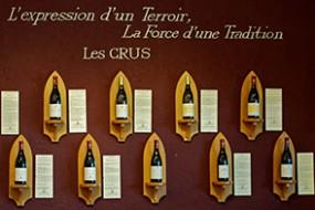 Frisch aus dem Rhônetal eingetroffen: Domaine Grand Veneur - Alain Jaume & Fils