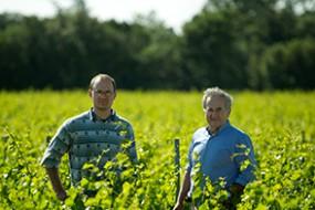 Wein des Monats November 2017 mit 20% Rabatt: Domaine Grand Veneur