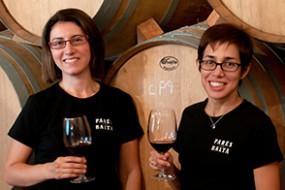 Neu bei divino Weinhandel: Parés Baltà Origen Mas Petit Tinto D.O. Penedès