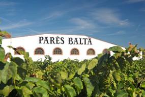 Neu bei divino Weinhandel: Cava D.O. Brut von Parés Baltà