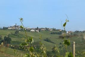 Wein des Monats Juni 2015: Cascina Castlèt