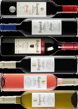 Probierpaket Nr. 64: Wein von Bagordi aus der Rioja