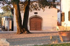 Wein des Monats Mai 2021 mit 15% Rabatt: edler Chianti Classico Gallo Nero von Rignana
